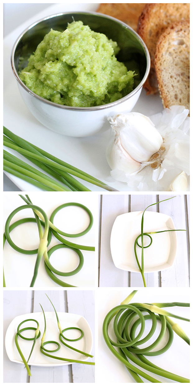 Easy to make Garlic Scape Pesto
